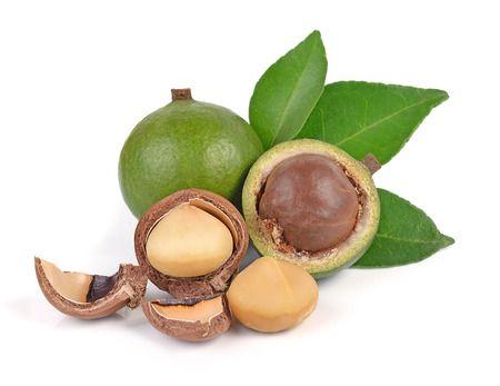 Noci di macadamia proprietà e benefici di un frutto molto ricco di grassi sani…