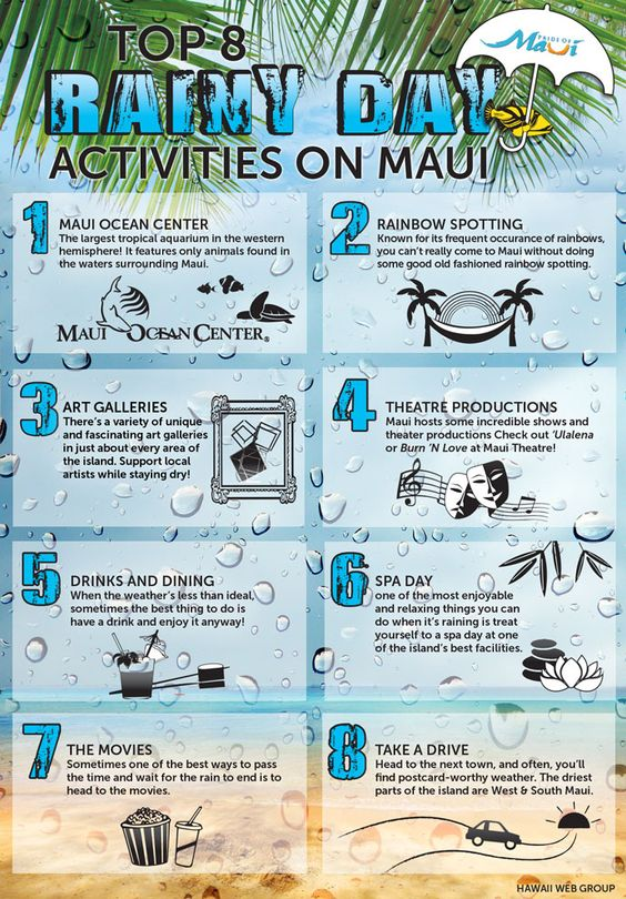 20 best images about Maui on Pinterest Sharks, Activities and Tide