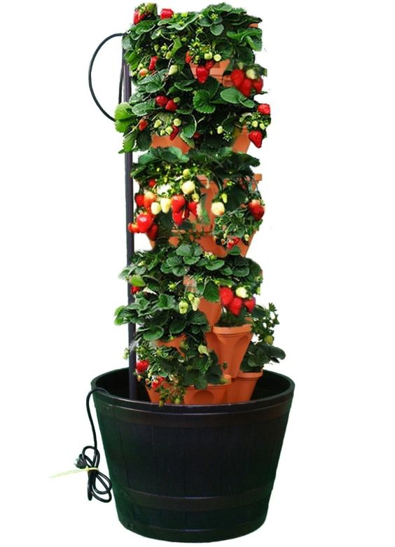 The vertical container hydroponics growing system trying this in aquaponics instead of the - Hydroponic container gardening ...