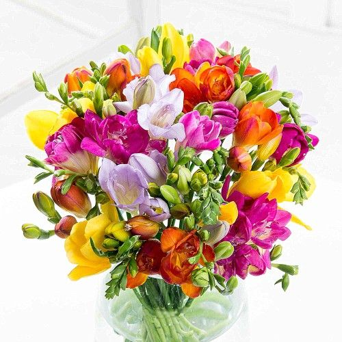 Simply Freesia Birthday Flowers Next Day Flowers Free Uk Delivery Flying Flowers In 2020 Freesia Flowers Birthday Flowers Bouquet Birthday Flowers