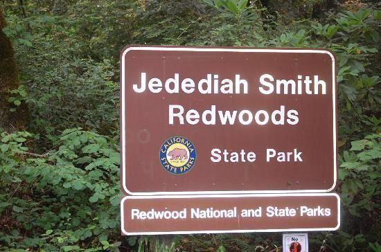 California Jedediah Smith Redwoods State Park Outdoorsierracaliforniacamping Crescent City California