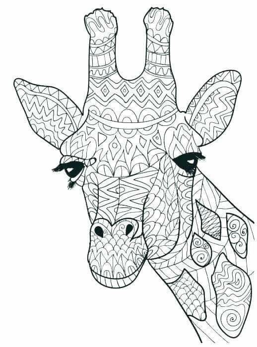 Pin De Lilian Uccellatore En Mandalas Mandalas Animales Mandalas Para Colorear Animales Animalitos Para Colorear