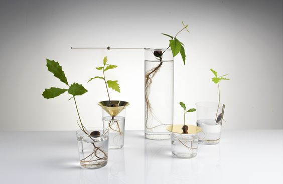 http://studiomichaelanastassiades.com/products/floating-forest-series