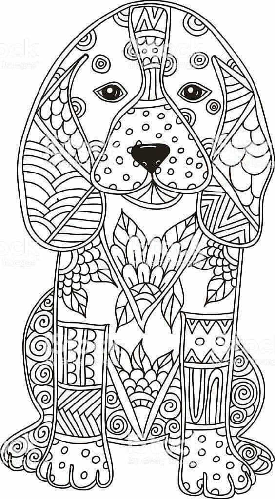 Pin De Maria Olivia En Mandalas Mandalas Para Colorear Animales Mandalas Para Pintar Pdf Mandalas Para Ninos Este tipo de mandala es el más buscado para. mandalas para colorear animales