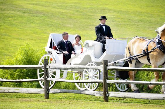 Elegant Horse Drawn Carriage Ceremony.  By: Lisa Price Photography an International Wedding Photographer based in Tennessee.