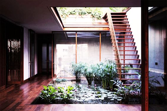 Splendid Interior Garden in a House from India by Studio Mumbai