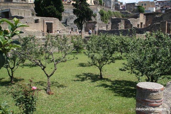 Herculaneum ruins - a garden inside