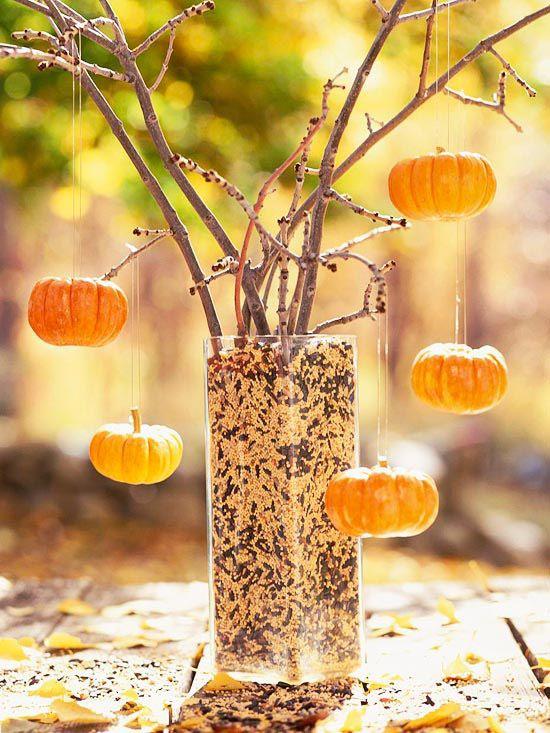 Pumpkin Tree--what a clever idea to celebrate nature:)