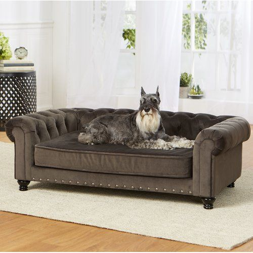 Cornelia Dog Sofa Reviews Joss Main With Images Dog Sofa Dog Sofa Bed Pet Sofa
