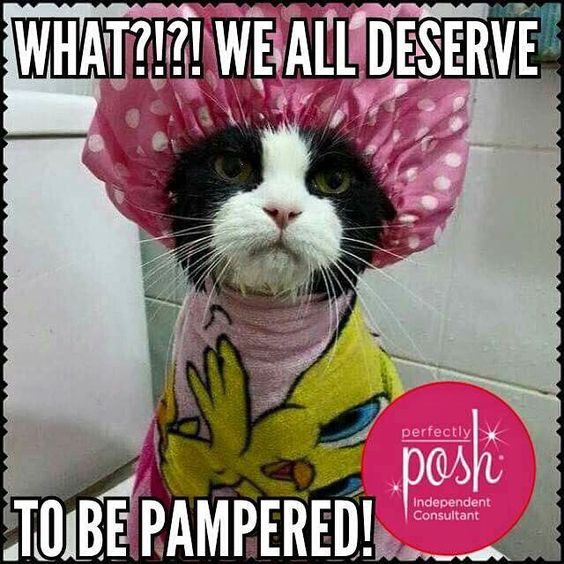 We all deserve to be pampered! Perfectly Posh does not test on animals and is cruelty-free!!  https://kchanahan.po.sh/