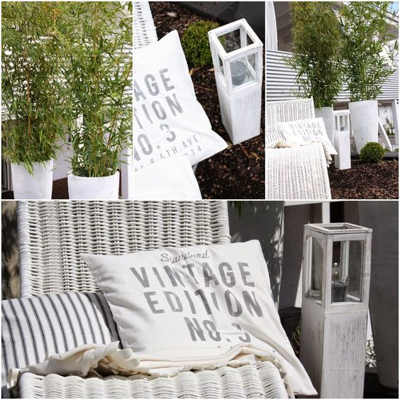 bambus, White, outdoor, garden
