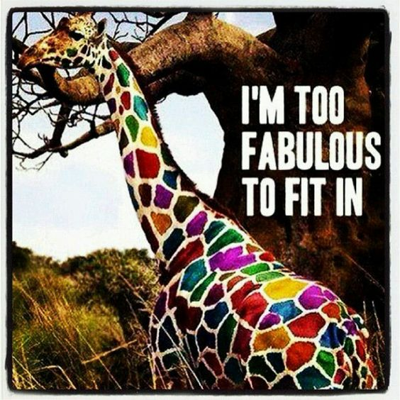 Fabulous indeed!!