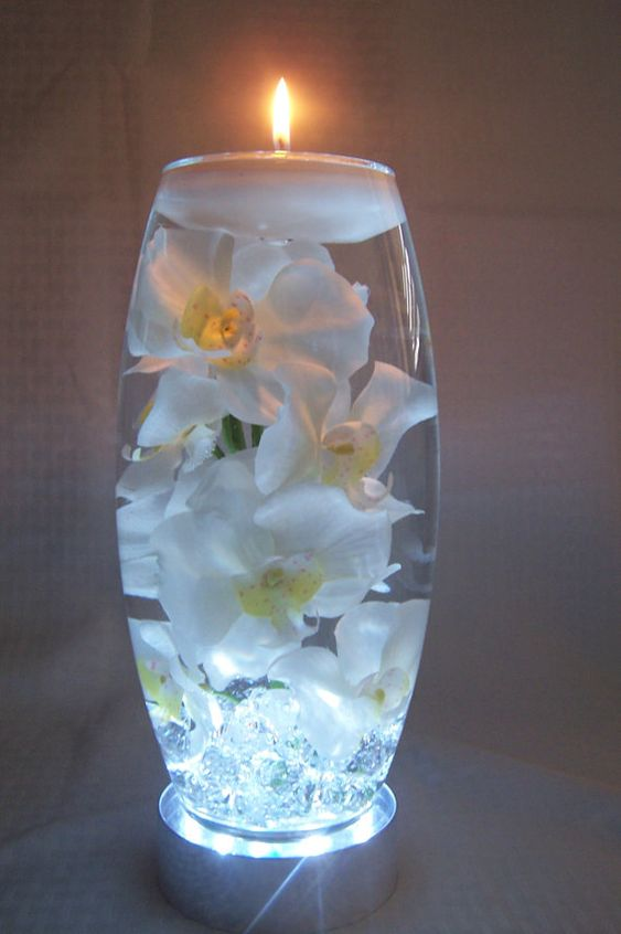 White orchids in water all a inch vase which sits