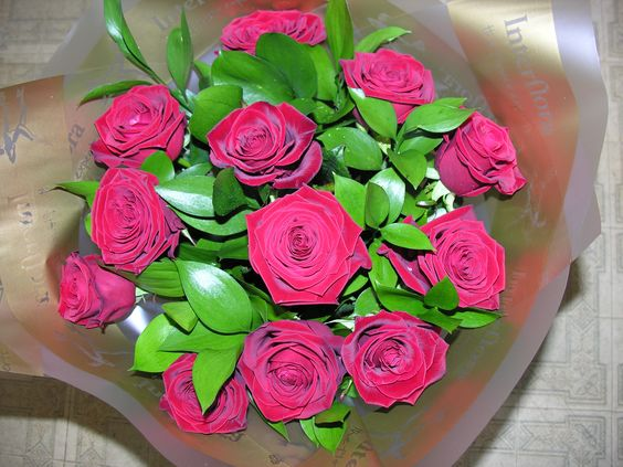 12 Red Roses hand tied with ruscus