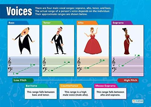 Voices Music Posters Gloss Paper Measuring 33 X 23 5 Music Charts For The Classroom Education Charts Music Charts Classroom Education Teaching Music