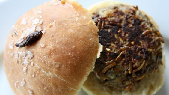 Grub Kitchen's signature dish: a bug burger (Credit: Credit: Nic Fleming)