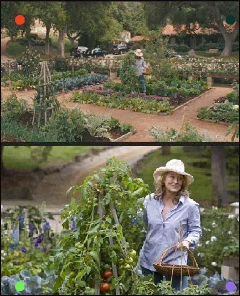 Vegetable Garden In Its Convoluted Motion Picture Need The