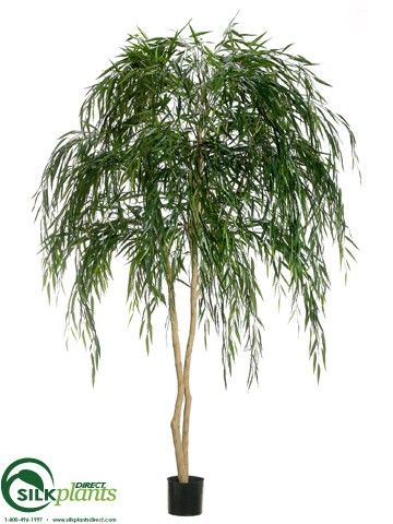 Weeping Willow Tree - Green Two Tone - Pack of 2