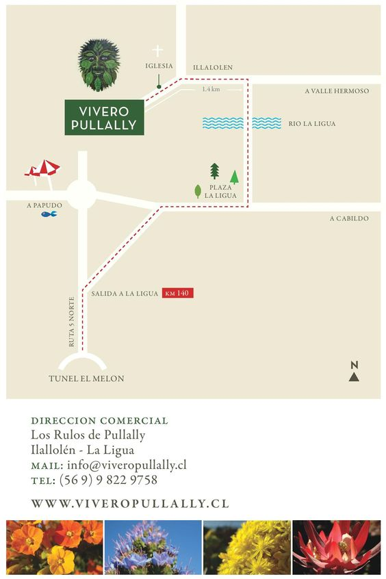 Mapa para llegar a Vivero Pullally
