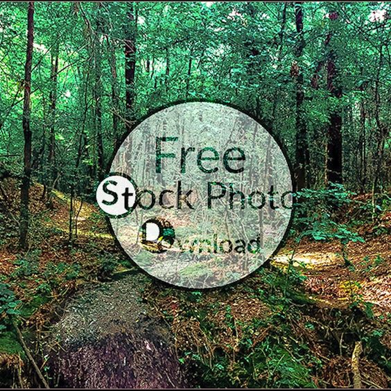 Download Free Photo - Spring Flow - Flowing WaterFree and Public Domain Stock Photo Download