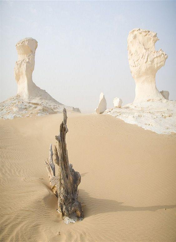 White Desert - Farafra - Egypten: