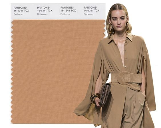 Fall/ Winter 2017-2018 Pantone Colors: Butterum