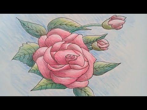 تعلم رسم وردة زهرة جورية Drawings Rose Flower Art