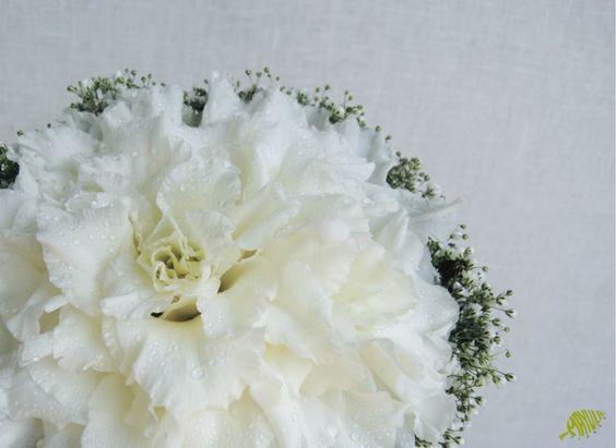 Ramo de novia Rosmelia blanco Mayula flores