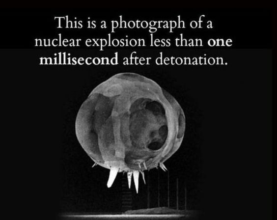 Crazy Facts - Gallery