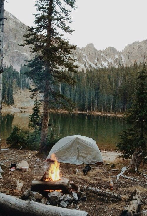 Face the adventure. I've never actually been camping but if I do it'll be like this
