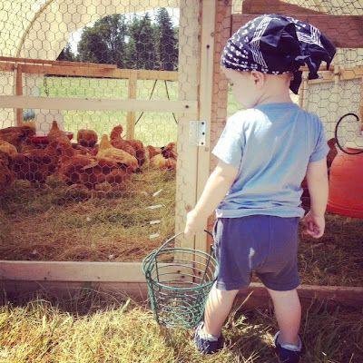 upstate farm visit