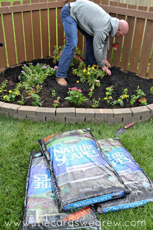 How To Build A Butterfly Garden Butterfly Garden Backyard Landscaping Designs Garden Yard Ideas