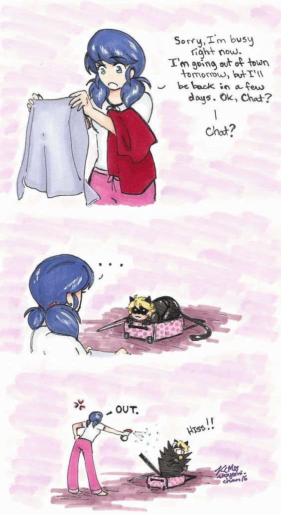 Miraculous Ladybug: Chat in a Suitcase by Kiyomi-chan16.deviantart.com on @DeviantArt