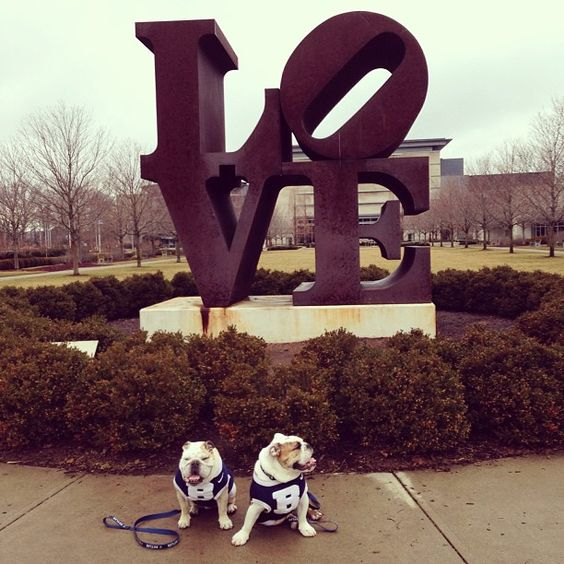 Starting the #indy #BigDawsgsTour showing our love of our hometown at @IMA!