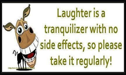 Laughter, I love it,,,it can change your day in seconds!