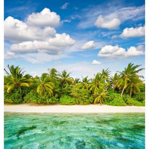 Blue Sea Beach Backdrops For Photo Studio Thin Vinyl Photography