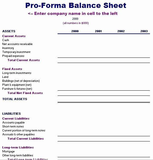 Pro Forma Financials Template Beautiful Best 25 Balance Sheet Template Ideas On Pinterest Balance Sheet Template Budget Template Statement Template