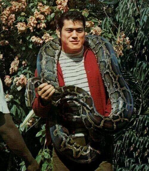 大蛇を巻くアントニオ猪木