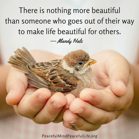 There is nothing more beautiful than someone who goes out of their way to make life beautiful for others.: