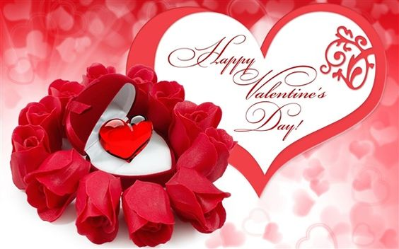 Happy Valentinstag, rote Rosenblüten, Rubin
