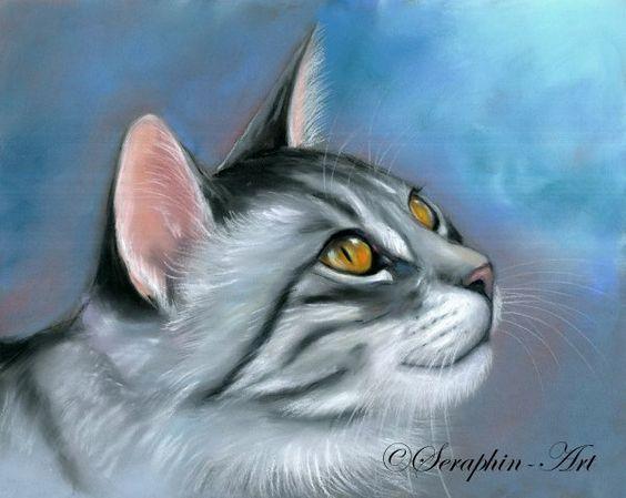 2009-12-37 Katze Pastellgemälde