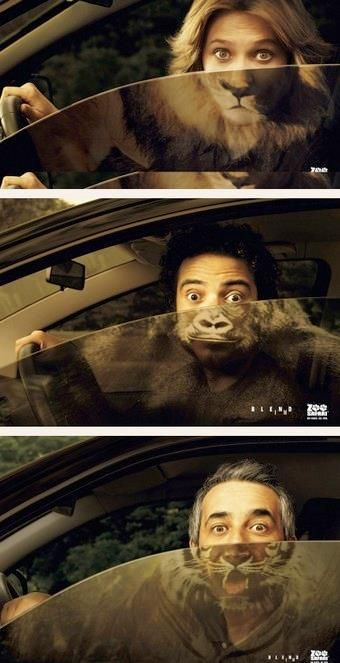 Zoo Safari - Great #Print #Ads: