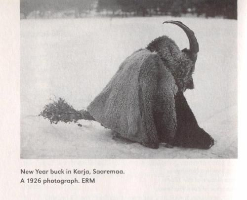 "The Finnish word for Santa Claus, Joulupukki literally translates to ""Yule Goat""."