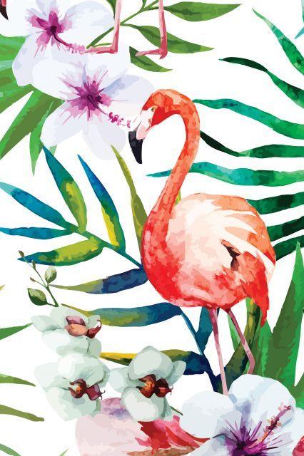 Tropical Flamingo: