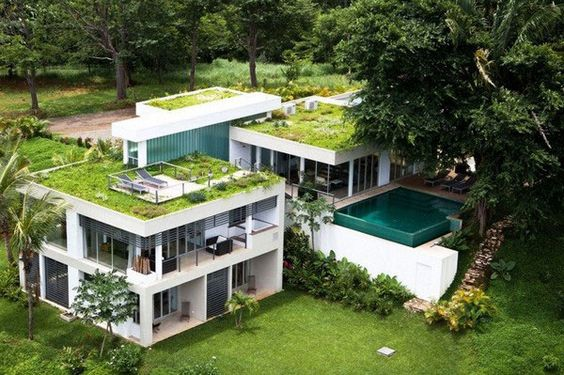 Incredible Grass Roof Open.