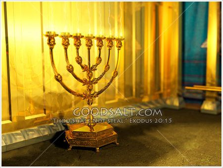 The golden Lampstand in the Wilderness Sanctuary Holy Place