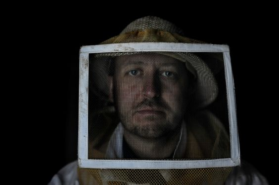 Was a USDA scientist muzzled because of his bee research? He points to two suspensions.The government says he traveled without approval, behaved unprofessionally.