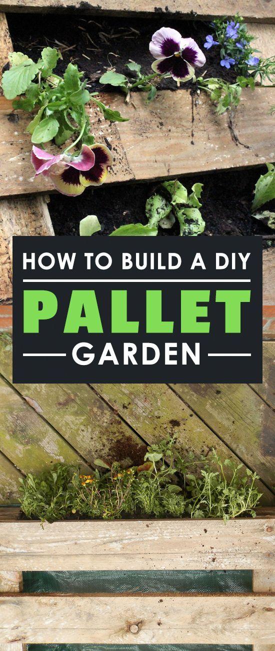 Lernen Sie Wie Sie Einen Super Cheap Diy Palettengarten Bauen Und Eine Tonne Grunes Blatt Wachsen Lassen Einfach Garten Pallet Garden Pallet Diy Pallets Garden