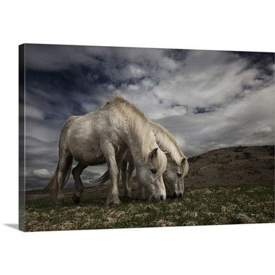 Canvas On Demand Two Years Later by Bragi Ingibergsson Photographic Print on Canvas Size: