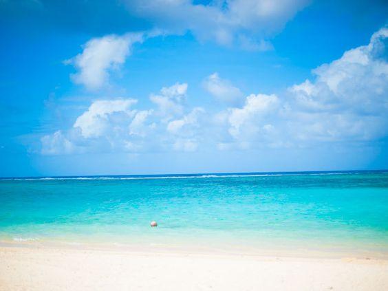 ヤシの実とグアムのビーチ